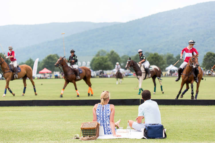 Vineyard Polo Sunday